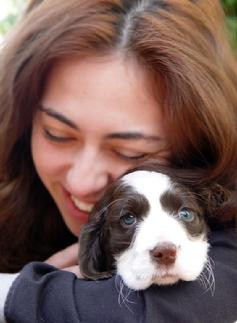 Bringing Puppy Home! The Top 10 Things New Puppy Parents Need to Have.