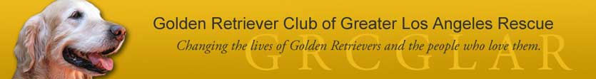 Golden Retreiver Club of Greater Los Angeles Rescue