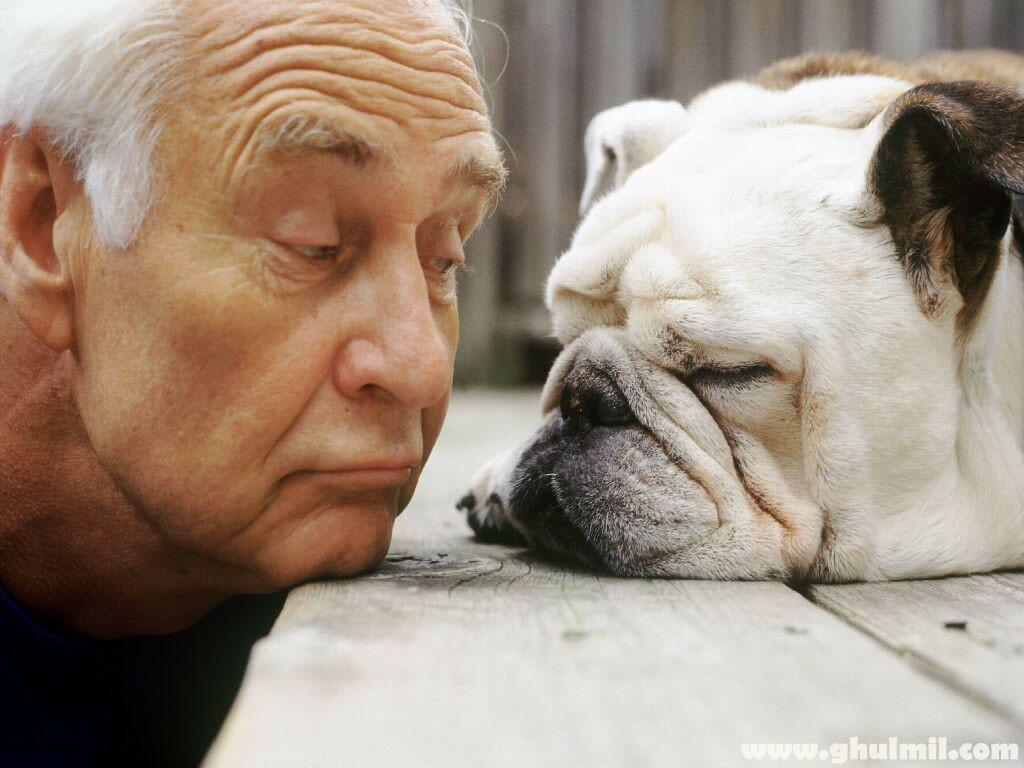 old-dog-with-a-old-man - BADDogsInc